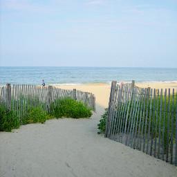 freetoedit photo photographybyme beach favoriteplace healthylifestyle