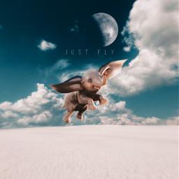 flying freetoedit sky dumbo