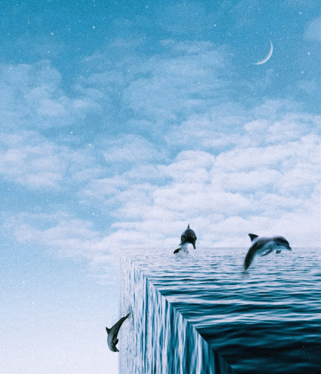 🌊🌊🌊🌊🐬 #freetoedit #aesthetic #aestheticphotos #aesthetically #aestheticedit #papicks #createfromhome #blue #fish #clouds #stayinspired #picoftheday #picsart #myedit #madewithpicsart #heypicsart #sparkle #stars #glitter #photoedit #manipulate #cube #cubeworld #sea #ocean #dolphin #down #abstract #edit #editing #perspective #bending #prespectivebending #bend #picsarttutorial