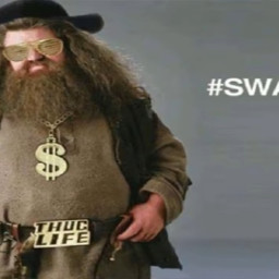 swagrid harrypotter xoxo cool 🧡