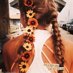 girl hair braids cute freetoedit