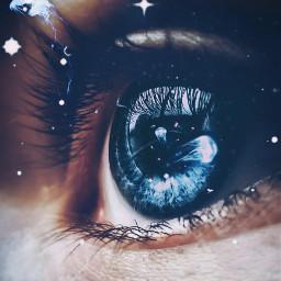 eye blue blueeye jellyfish eyelahes freetoedit