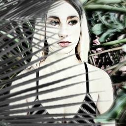 freetoedit myphotography model feminine palmtrees srcpalmtreeshadow palmtreeshadow