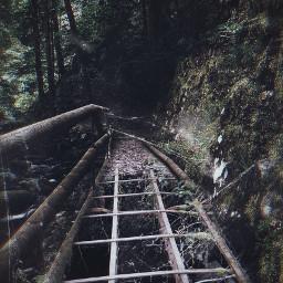 freetoedit bridge woodbridge broken spiderweb
