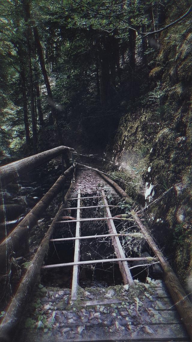 #freetoedit #bridge #woodbridge #broken #spiderweb #oldroad #nature #mask #dust #madewithpicsart #picsarteffects #remixit
