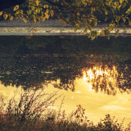freetoedit sunset reflection river naturephotography