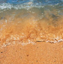 photography photographer beachlife picoftheday travel freetoedit