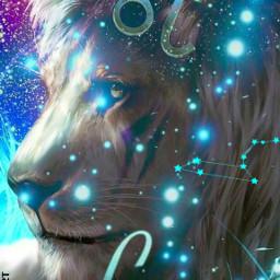 zodiacsign leo lion astrology mycreation freetoedit