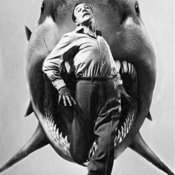 freetoedit shark man aesthetic old