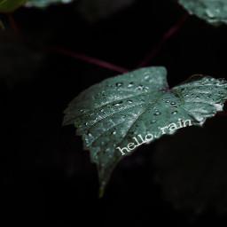 freetoedit rain