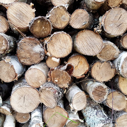 pccirclesallaround circlesallaround firewood village naturephotography
