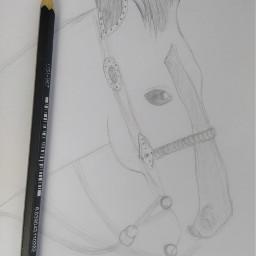 freetoedit art drawing animal horse