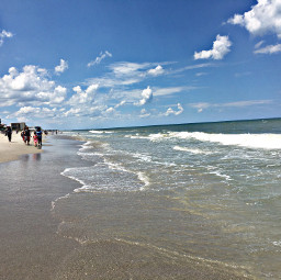 freetoedit ocean beach nature sky