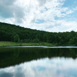 andesny pondlife upstatenewyork pcwaterreflection waterreflection