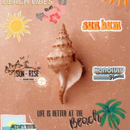 beach seashell ocean waves beachy peachy aesthetic freetoedit ircseatreasure seatreasure