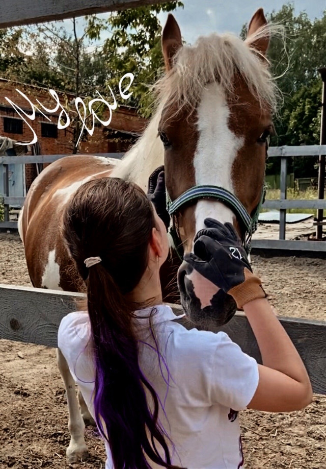 Some hugs🤗💕 ~•~•~•~•~•~ 10 likes = the next photo ~•~•~•~•~•~ #Fifa #horse #horses #equestrian #equestrians #equine #equinephotolove #equinepassion #equitation #chevaux #cheval #лошадь #лошади #конныйспорт #конник #конники #freetoedit