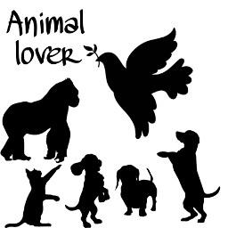 freetoedit gorila pigeon dog dogs kitty cat animal animals lover animallover animallovers