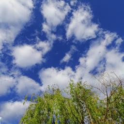freetoedit followme follow4follow clouds cloudscape cloudsandsky sky skyscape skyandclouds nature naturephotography naturelovers naturesbeauty natureporn natureshot nature_perfection nature_brilliance photography photooftheday myphotography photographylife photoediting picsart picsart100million picsartlife