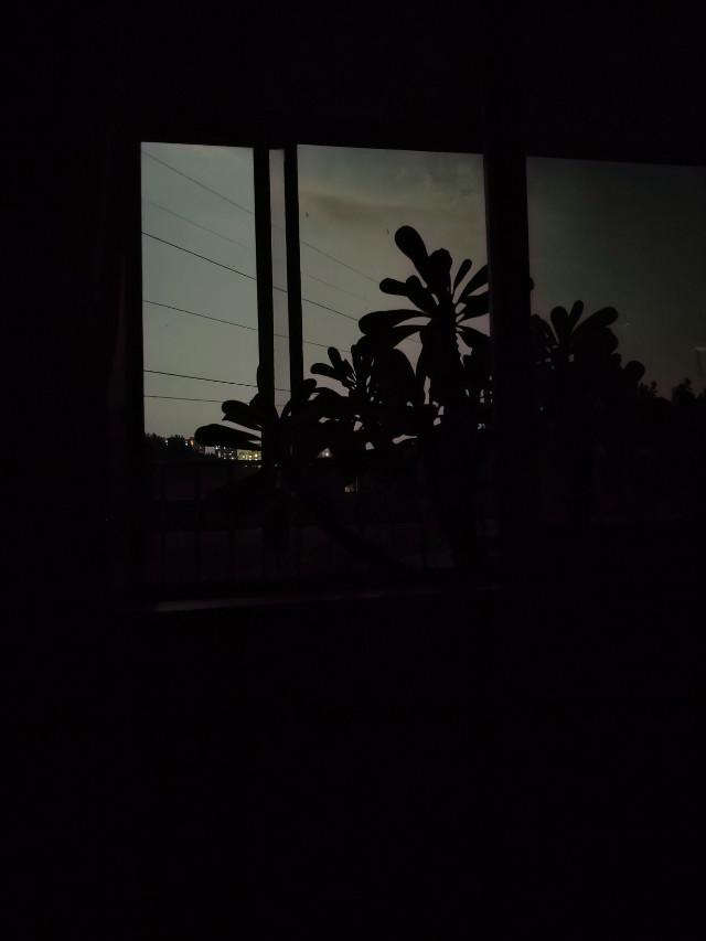 #freetoedit #night #nightsky #nightphotography #nightshot #black