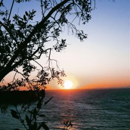 freetoedit nature sunset photography myphotography