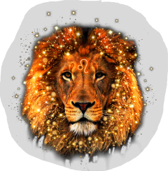 freetoedit lion leo zodiac summer leozodiac leoseason photography animals nature glitter bokeh belgium