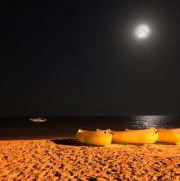 freetoedit moon night beach beachphotography beachview nightphotography nightshot
