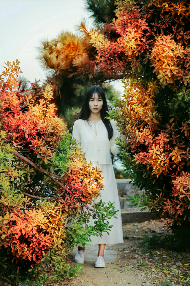 #freetoedit #picsart #picksart #2020art #nature #naturephotography #girl #portrait #portraitphotography #portraitofawoman #color #colorsofnature #colorfulsummer #dailytag #vipshoutout  #challenge #remix #remixit #remixed