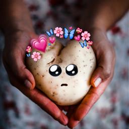unsplash freetoedit shypotatoes potato love tonipl25 interesting