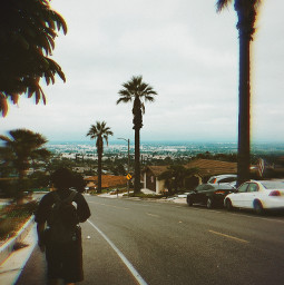 to oz topoftheworld hikelife caligirl hikingadventures palmtrees cityscapes seeme mood love mymind myeye bchez photography edit