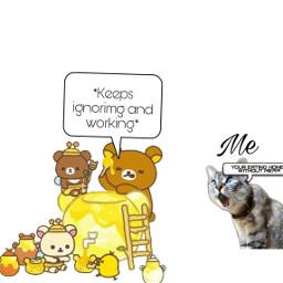 rillakkuma honey upset keepsignoring freetoedit