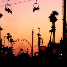 california calilife sun sunset background fair fariswheel palm palmtree photography