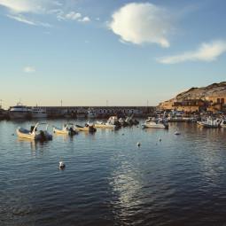 italy travelphotography traveltheworld gargano bestplace italianplace summer sealife sea pugliaview bestview peschici peschiciitaly calmwaters bestplacestogo