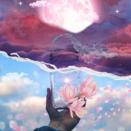 freetoedit ircmagicjar magicjar flower aesthetic
