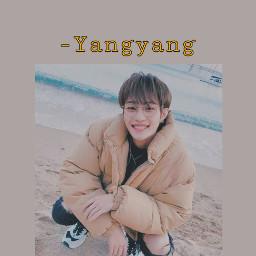 yangyang liuyangyang wayv nct wallpaper boygroup kpop mandopop smentertainment labelv freetoedit