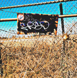 graff fenceshot hikelife caligirl hikingadventures nature barbedwire beauty seeme mood mymind myeye bchez photography edit