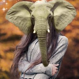 freetoedit animal human elephant handsome ecmyanimalalterego myanimalalterego