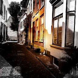freetoedit kinora myedit myremix sunshine sunny
