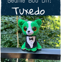 beaniebooedits ytthumbnail watchthisvideo tuxedo freetoedit