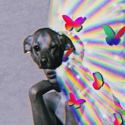 freetoedit arianagrande toulouse ariana grande rainbow butterflies toulousegrande toulousemask masked ecmyanimalalterego