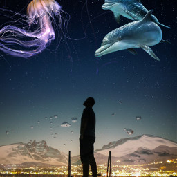 silhouette doubleexposure jellyfisch dolphin nightsky citylights stars orient_arts madewithpicsart freetoedit papicks stayinspired createfromhome remixit