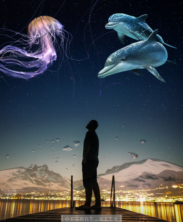 Edit by: @orient_arts   #silhouette #doubleexposure  #jellyfisch #dolphin #nightsky #citylights #stars #orient_arts #madewithpicsart #freetoedit #papicks #stayinspired #createfromhome#remixit