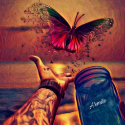 freetoedit @asweetsmile1 butterflies butterfly colorful color creative bright oilpaintingeffect oilpaint hand ircmagicjar magicjar