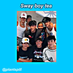 swayboys tiktok tea spillthetea tiktoktea trend noahbeck brycehall joshrichards