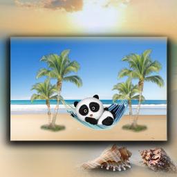 freetoedit beach bear panda cute cutebear myedit