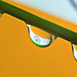 india indian indianflag jaihind bharatmatakijai bharat indiapictures waterdrop waterdrops waterdropletphotography droplet grass indoorphotography reflection macro macrophotography macroshot