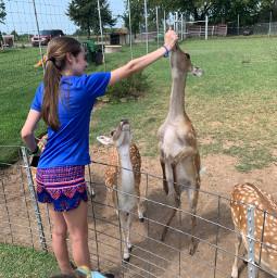 teengirl teenagegirl teenager deer lostcreeksafari feedingdeer cute adidas tricks deers
