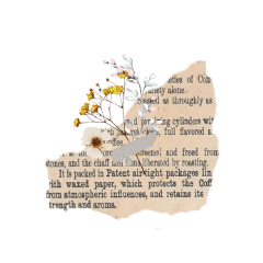 freetoedit art artistic asthetic vintage vintageaesthetic italy interesting california tumblr flower flores tape text periodico travel cinta flor sticker stickers moon