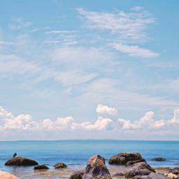 freetoedit naturephotography oceanview rocks birds beatifulday beatifulsky skyloveres
