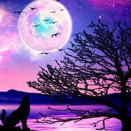 silhouette silhouettes wolf howlingwolf tree moon galaxysky birds fullmoon heypicsart papicks freetoedit