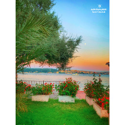 freetoedit plant tree water sky nature tranquilscene postproduction grass nopeople beautyinnature tranquility sea day outdoor horizon colorful freshnesd waterfront